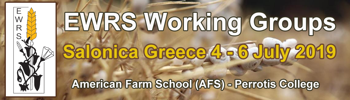 Workshop EWRS Salonica 4-6 July 2019